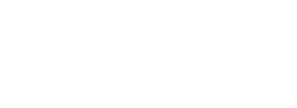 Mr. Windshield gives mobile personal service to all his customers